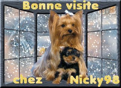 Blog de nicky98