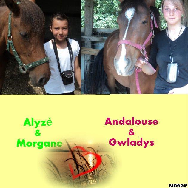 Blog de Andalise
