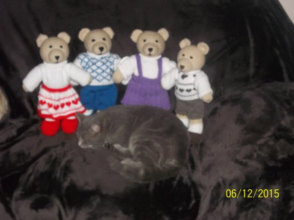 famille ours au complet