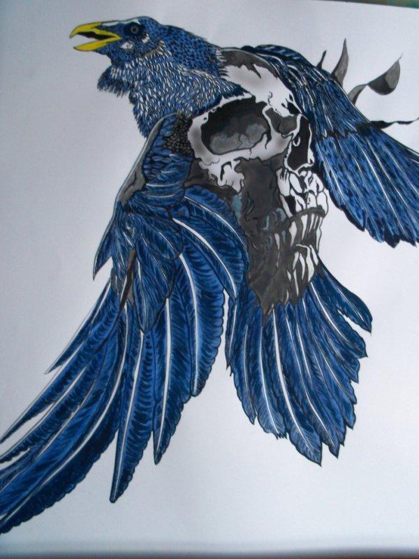 Corbeau tète de morts