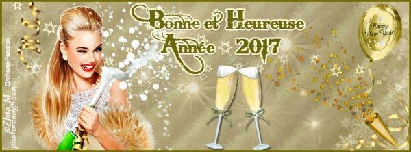 Bonne année et meilleurs voeux à tous