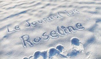 26 - Le journal de Roseline