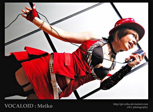Image de coslay de: meiko