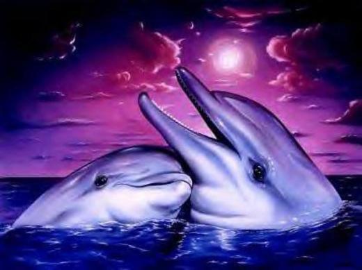 des daufin j ador