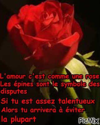 L'amour et la rose