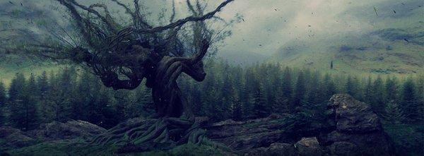 OS Hermione