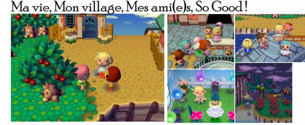Blog de ever animal crossing animal crossing wii for Agrandissement maison animal crossing wii