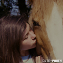 Photo de cute-poney