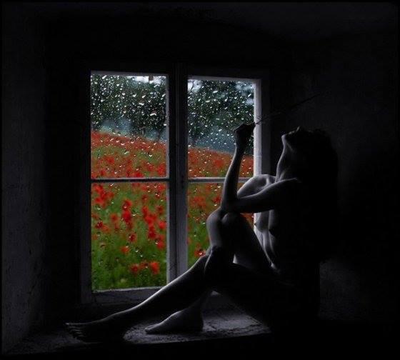 Chuvinha sob a minha janela// Petite pluie sous ma fenêtre