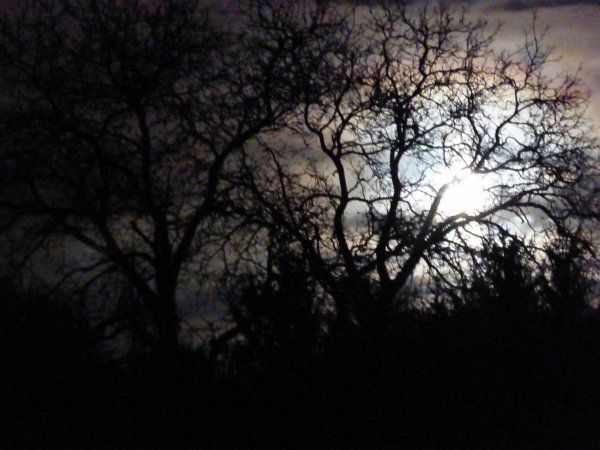 A lua***la lune