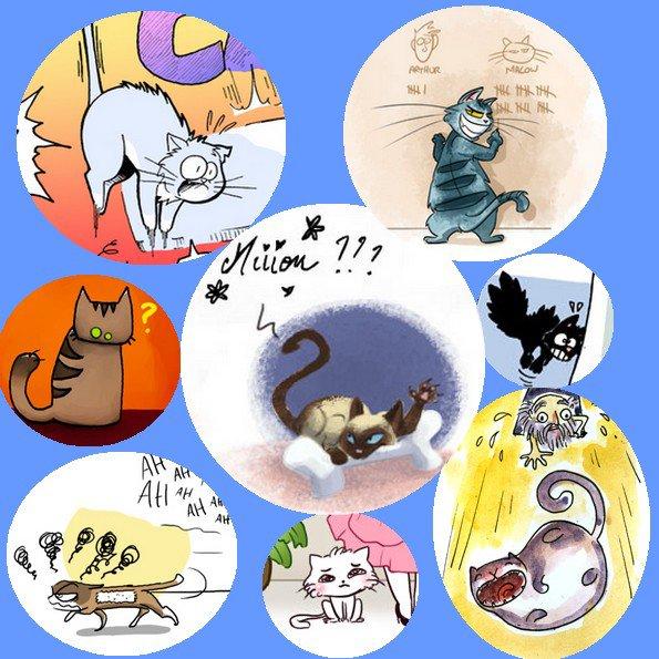 Les chats de VDM