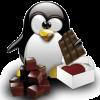 Xx-pingouin
