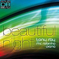 Diana Birzu feat. Tony Ray & MC Robinho  / Beautiful night (Extended Official Version) (2009)