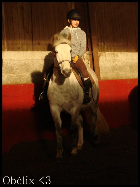 Obscur & Lu Obélix, petit poney fou !Obscur & Lu