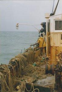Femme patron pêcheur à Royan