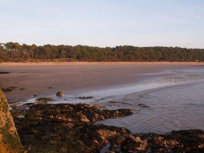 Le littoral royannais