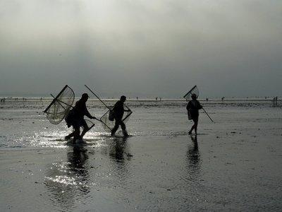 La pêche au haveneau