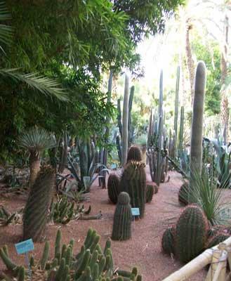 La Villa Majorelle et son jardin