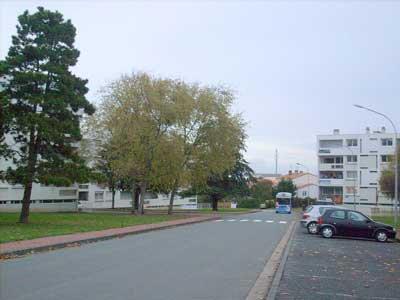 Le quartier de la Marne-Yeuse