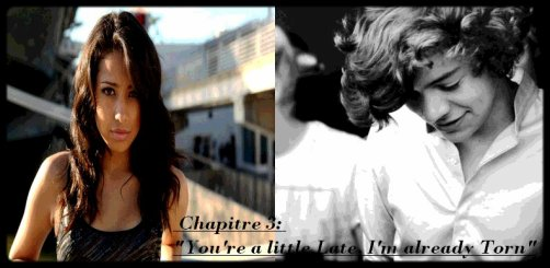 """chapitre 3: """"you're a little late, I'm already Torn"""""""