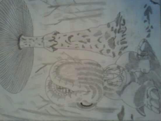 Mes dessins noir et blanc