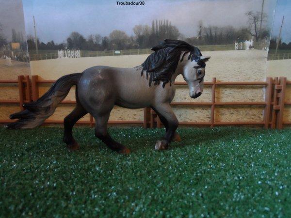Deuxième partis des chevaux