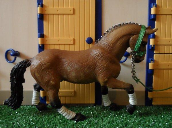 Troisième partit des chevaux