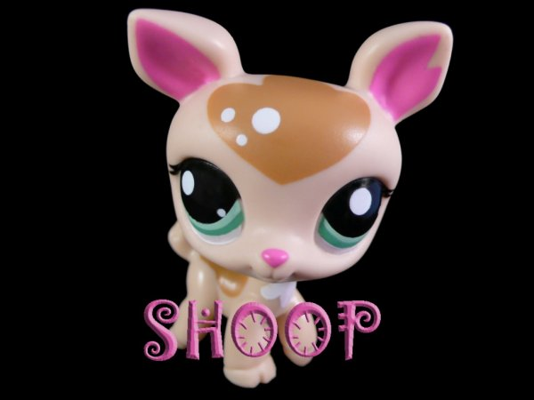 Petshop 2486 collection petshop shoop blog et site - Image petshop ...