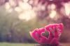 """Pourquoi aimer sans """"i"""" ça donne amer?"""