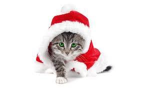 hit list de Noël