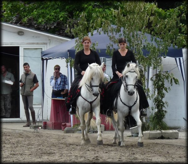 Equidour Stables 01/07/2012