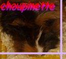 Photo de jaime-choupinette-x