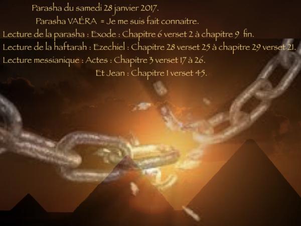 Parasha du samedi 28 janvier 2017.