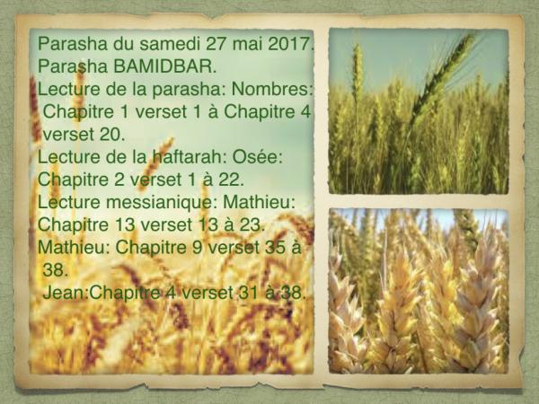 Parasha du samedi 27 mai 2017.