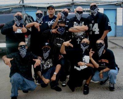 ..: BASSKICK :.. °°°SALVADOR DJ°°° (2011)
