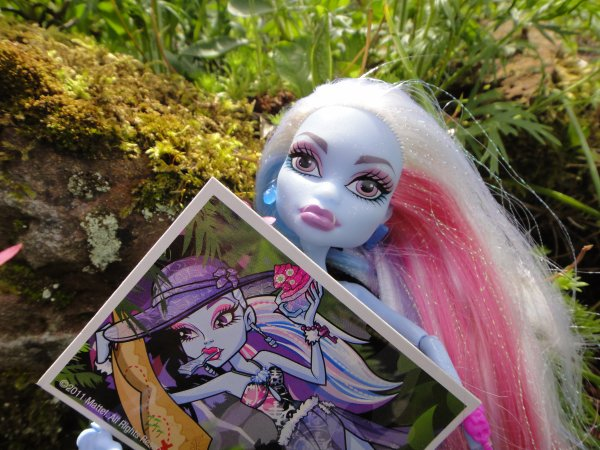 mes nouvelles Monster high