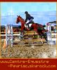 Centre-Equestre-Peyriac