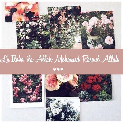 Les vertus du Tawhîd