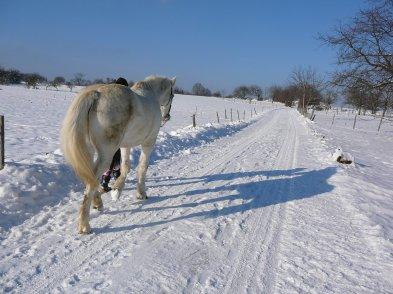 * Un hiver enneigé ca donne ca !  *