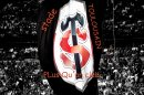 Photo de Stade-ToulousainRugby31