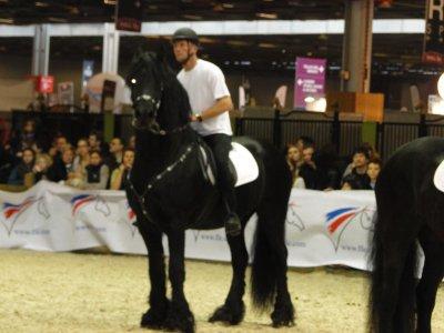 Salon du cheval 2011 mon p 39 ti boss d 39 amour - Salon du cheval a mons ...
