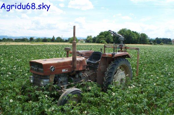 MF 140 + chariot d'arrosage (à l'exploitation ou il y a le 412) (06/07/10)