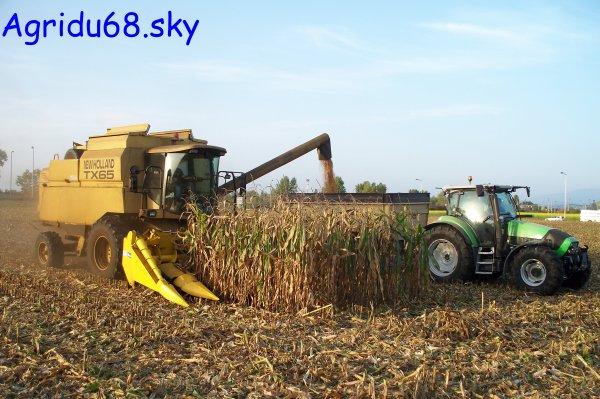 TX 65 Plus + bec à maïs NH de 6 rangs (8/10/10)