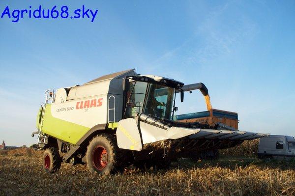 CLAAS Lexion 520 + bec à maïs GRECAV de 6 rangs (26.10.10)