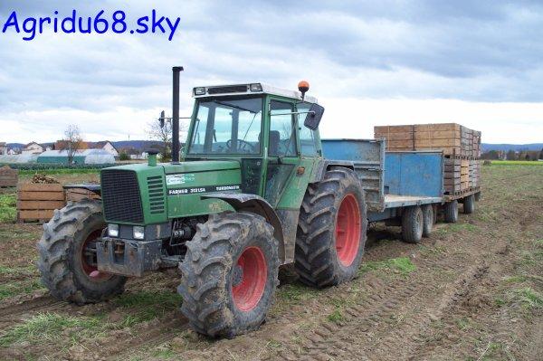 Fendt Farmer 312 LSA + benne DUCHESNE 12T et plateau (à l'exploitation ou il y a le 412) (06.11.10)