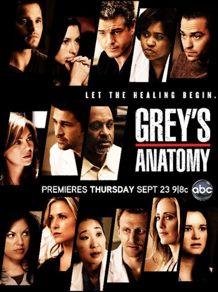 GREY'S ANATOMY saison 9 vost COMPLETE