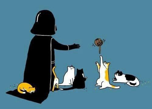 Un chien...Un chat...et...LA MORT