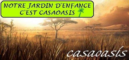 LES SCOUTS DE LA 9ème CASABLANCA à BEAUSEJOUR
