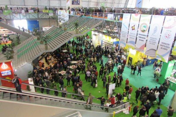 ALMERIA VISITE EXPO