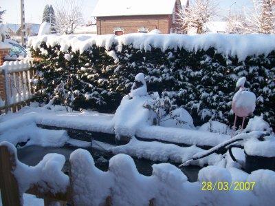 trop beau la neige